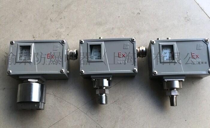 上海專業SYEx系列防爆壓力控制器
