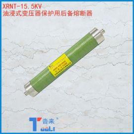 高压限流熔断器XRNT-15.5KV油浸式变压器保护用