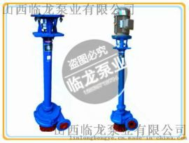 临龙100NPL120-16立式污水泥浆泵