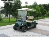 两人座高尔夫观光车LT-A2