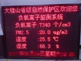 景区负氧离子监测系统解决方案供应商