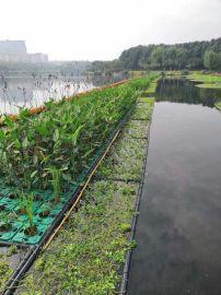 如克环保新品推出太阳能生态系统