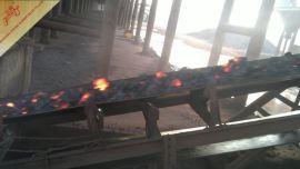 耐灼烧输送带/耐热耐高温输送带EP200N/mm