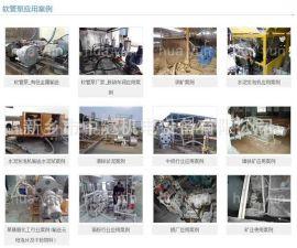 江西蠕动工业软管泵厂家 软管泵市场
