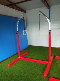 兒童體適能訓練吊環 感統訓練可升降吊環