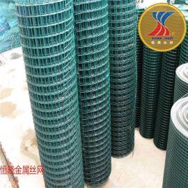 浸塑电焊网 土地承包分地用绿色铁丝网 圈山圈地用荷兰网厂家价格