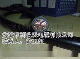 耐火变频电缆NH-BPYJVP3国飞绿色