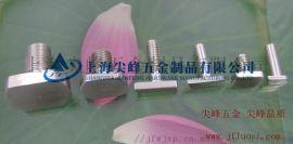 GB37T型螺栓,304T型螺栓,316T形螺栓