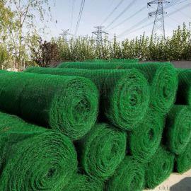 三维复合土工网厂家直销 NSS4塑料塑料土工网