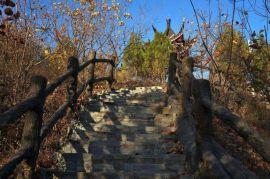 中国南方景观仿木栏杆生产基地,水泥仿木栏杆厂家考察