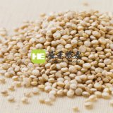 盛禾藜麥 白藜麥 進口品質 祕魯藜麥品種 食用原料