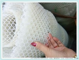 PE塑料网养殖防护网