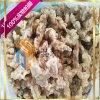 四川小酥肉自動掛漿機 小酥肉油炸生產設備