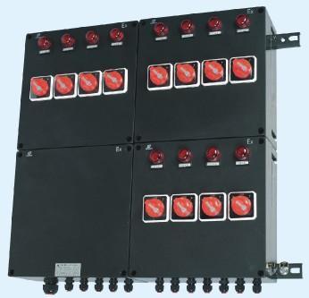 防爆配電箱 BXD8050-防爆箱 ATEX