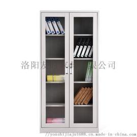 洛阳友时办公学校钢制通体玻璃对开门档案柜