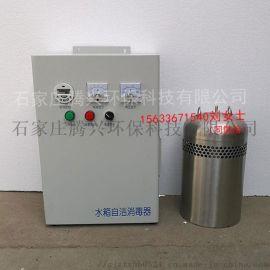可设定运行时间自动内置式水箱自洁消毒器WTS-2A