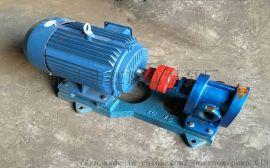 红旗2CY3.3/0.33不锈钢齿轮式输油泵