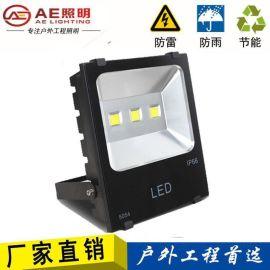 AE照明AE-TGD-0  功率户外射灯,大功率射灯,户外投光灯100W150W