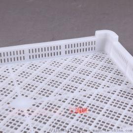 天仕利生产塑料单冻盘 调理厂用单冻盘 肉串塑料盘子