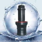 江轴流泵 东坡泵业 大流量轴流泵