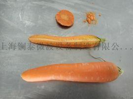 胡萝卜/橙子/菠萝/玉米粒真空低温微波干燥设备