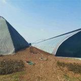 河北省日光溫室設計 日光蔬菜大棚造價