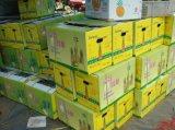 三亞火龍果紙箱 訂做烤鴨手提箱 海口水果紙箱