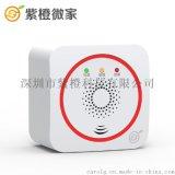葫蘆島汽車一氧化碳氣報警器-無線家用煤氣探測器 wifi