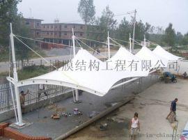 信阳膜结构篮球场,膜结构景观