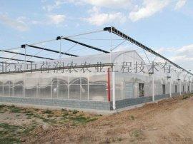 膜连栋温室,大面积蔬菜瓜果种植,花卉种植,优质薄膜连栋温室