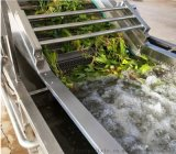 厂家直销全自动洗菜机水果蔬菜清洗机