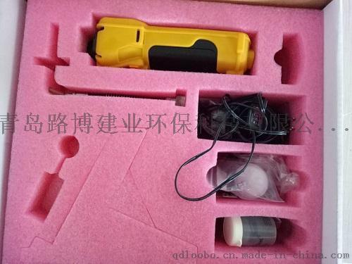 泵吸式可燃气毒气检测仪 PGM-1600