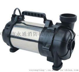 JKH-400立式卧式兼用2寸花园浇灌潜水泵