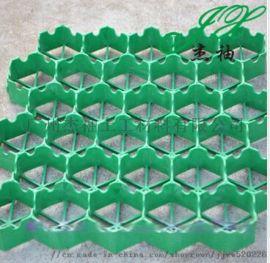 杰袖7S厂家直销琼海植草格,琼山塑料植草格,三亚植草格规格