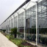 玻璃溫室 連棟玻璃溫室造價 玻璃溫室大棚工程