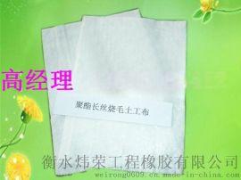 黑龙江哈尔滨供应衡水炜荣 **短纤** 土工布 塑料双向土工格栅