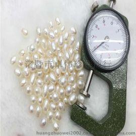 卓伟珍珠 批发淡水珍珠原料 米型5-6mmAAA级420元一斤 15101201