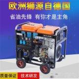 便携直流250A发电电焊机