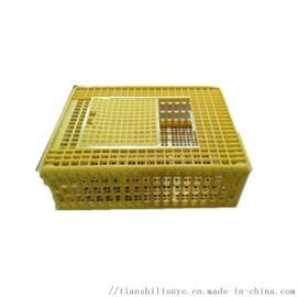成鸡鸭运输笼子塑料鸡鸭笼子装鸡鸭塑料笼子