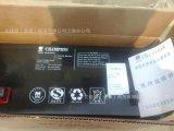 NP100-12 12V100AH 直流屏UPS/EPS电源 铅酸免维护蓄电池