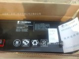 NP100-12 12V100AH 直流屏UPS/EPS電源 鉛酸免維護蓄電池