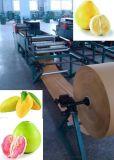 芒果袋機 芒果紙袋機 生產芒果袋的機器