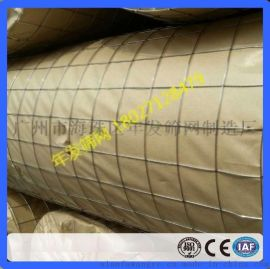 广州厂家直销抹灰钢丝网 镀锌电焊网 工地防裂网 抹墙铁丝网