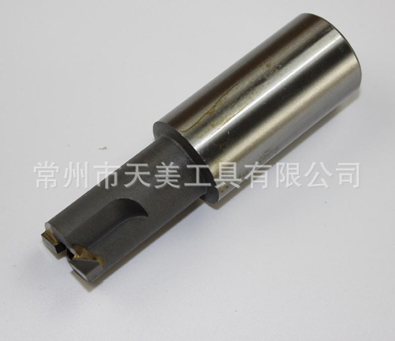 天美直銷 焊接成型刀 非標成型刀 焊接合金刀具 非標刀具訂製