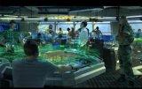 軍事軍化電子沙盤製作
