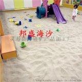 遊樂場用沙 兒童娛樂無塵海沙 微景觀裝飾