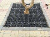 北京护树板