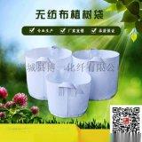 河南厂家美植袋植树袋种植袋怎么使用使用寿命