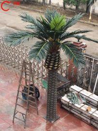 东莞仿真植物厂家直销 人造海藻树 海枣树大量批发 室内海藻树