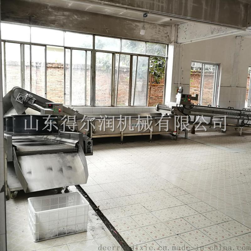 重庆DR1自动花椒蒸煮生产线 花椒杀青清洗设备简介
